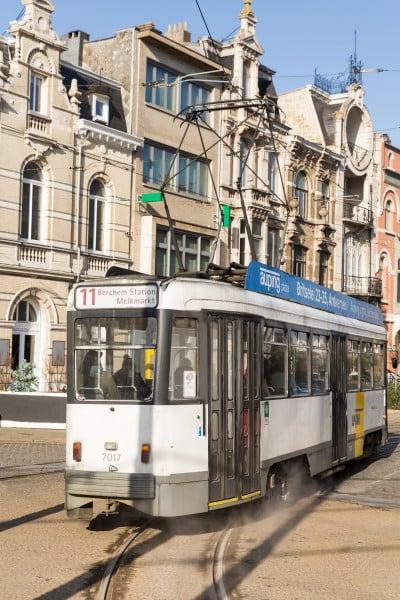 Tram & bus